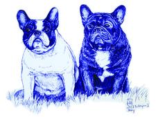 Bulldoggen2